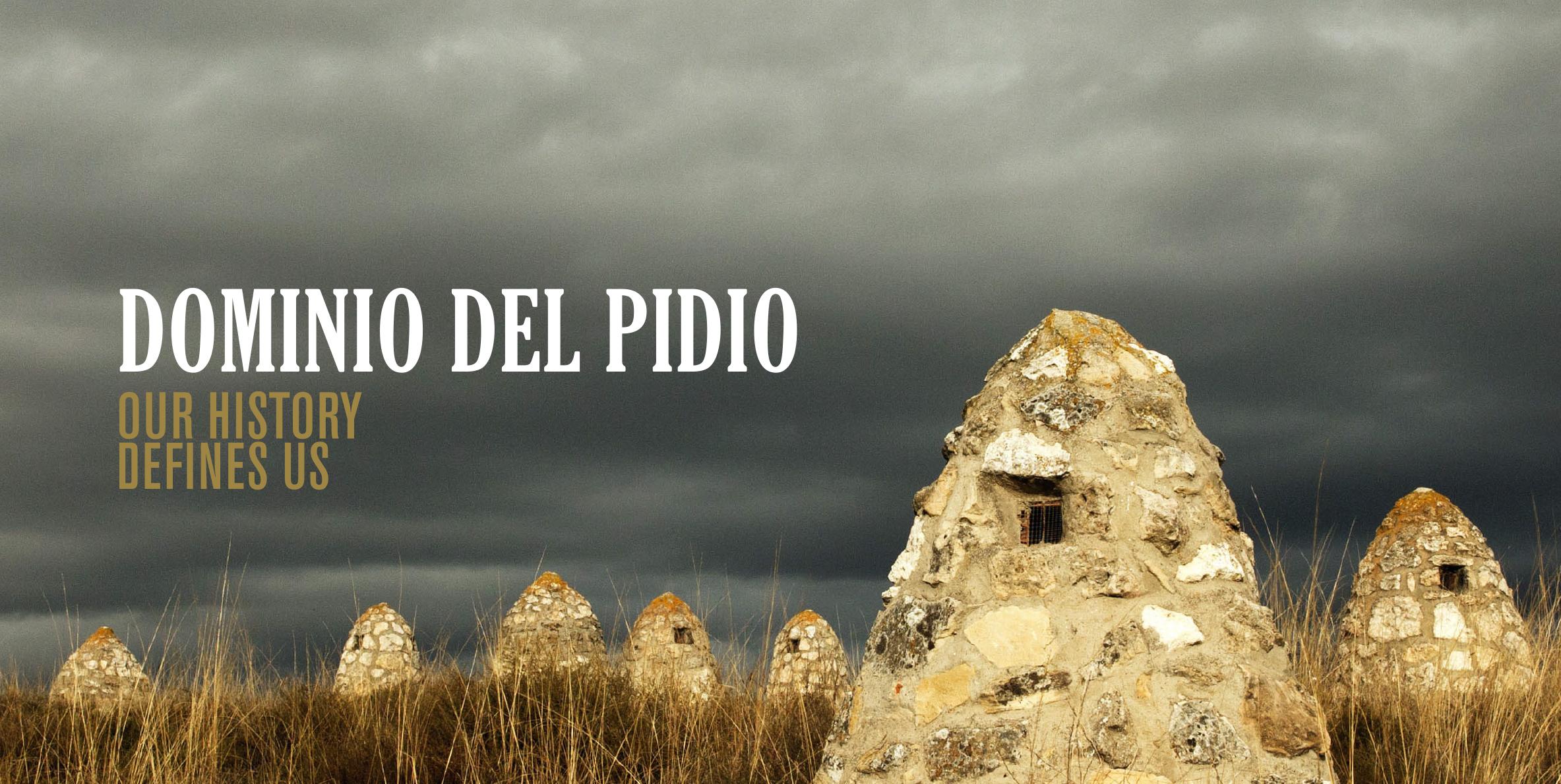 Nos sumergimos en la historia de la Ribera del Duero para Dominio del Pidio
